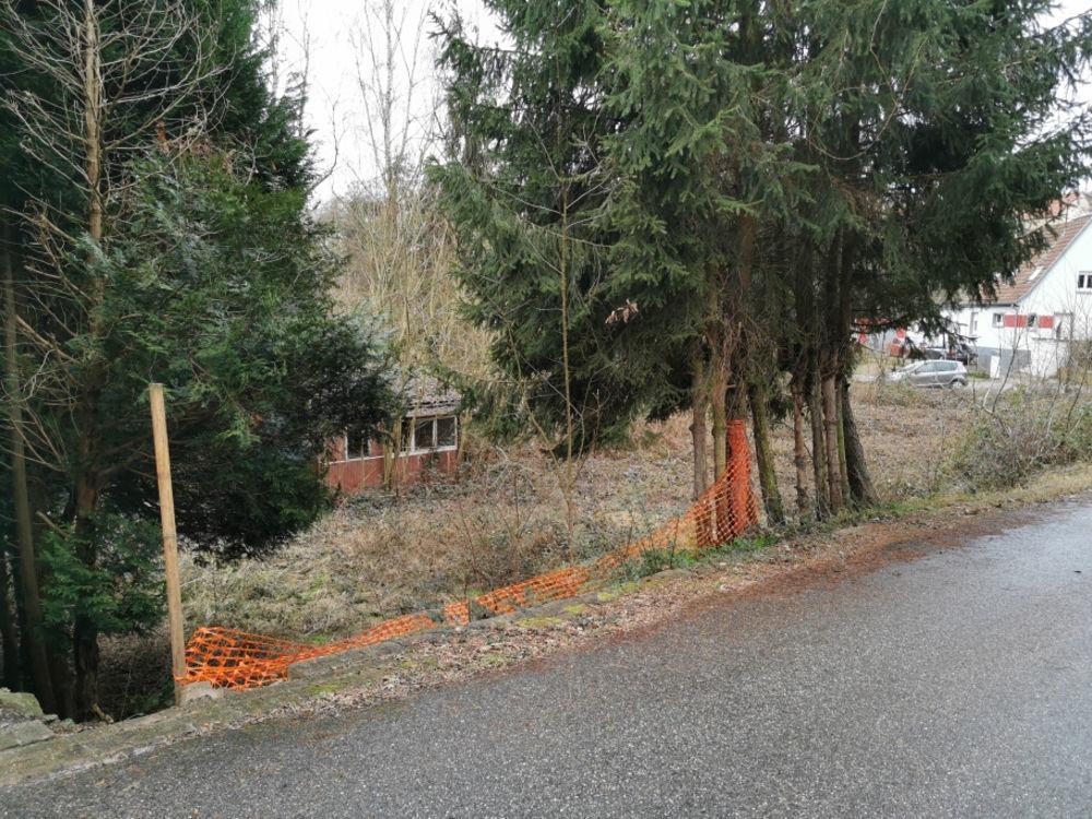 Vente Terrain KALTENHOUSE terrain constructible de plus de 8 ares UN ENDROIT AU CALME A SAISIR !!! Kaltenhouse