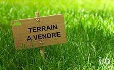 Vente Terrain Lesparre-Médoc (33340)