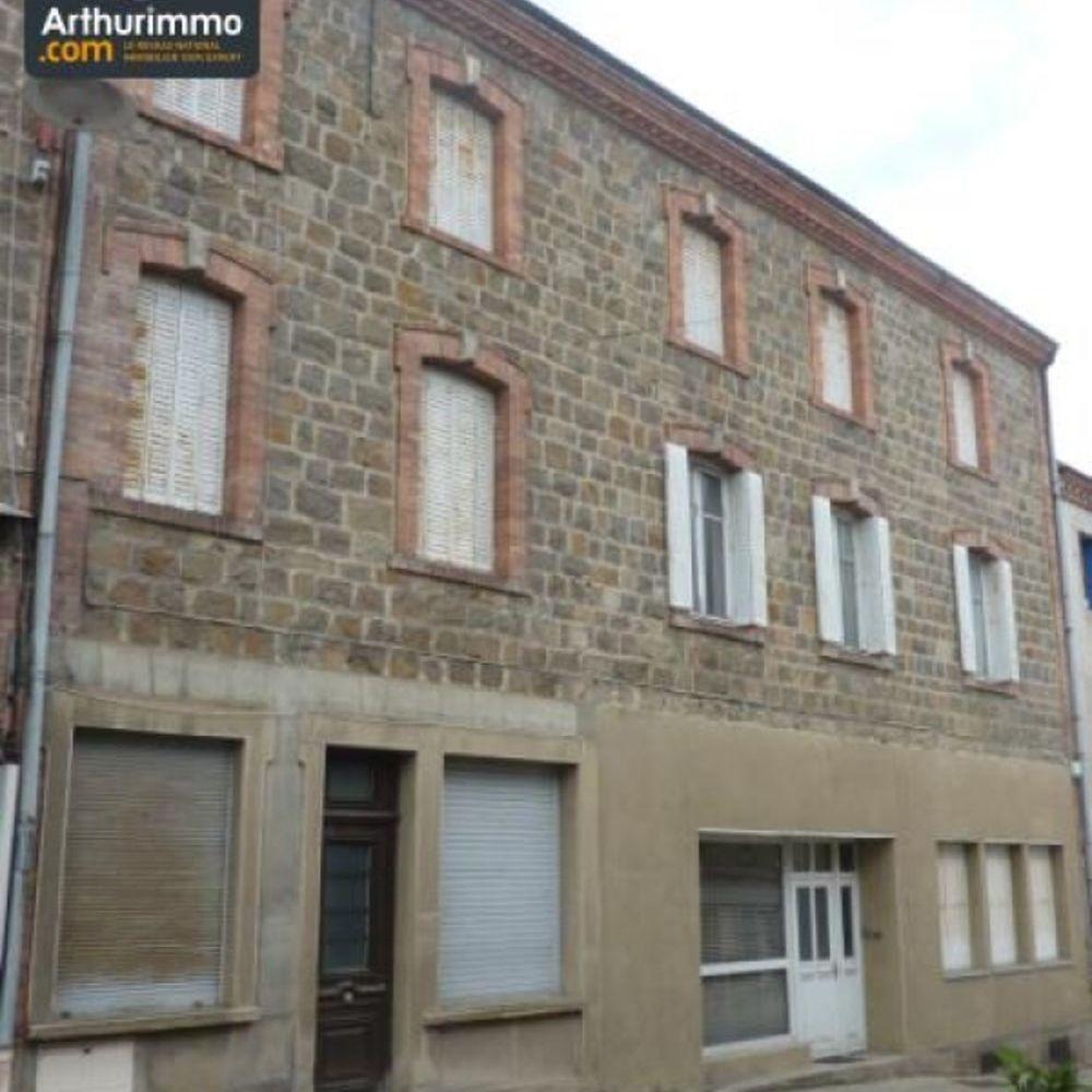 vente Immeuble Sail-sous-Couzan (42890)