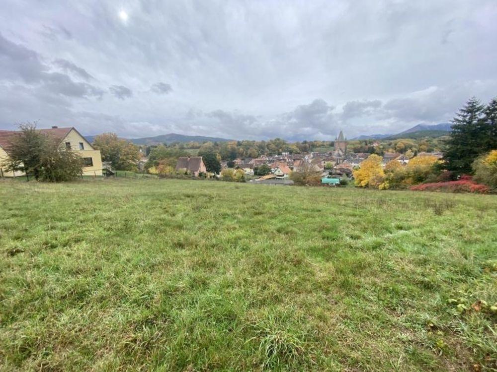 vente Terrain - 2526 m² Niederhaslach (67280)