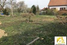 Vente Terrain Kertzfeld (67230)