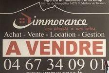 Brasserie 227900