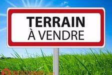 Vente Terrain Cholet (49300)