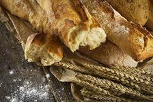 Boulangerie Pâtisserie EURE Référence BL2288 314360