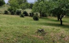 Vente Terrain Toulouse (31100)