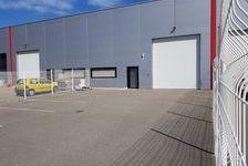 Local d'activité 300 m² 1750