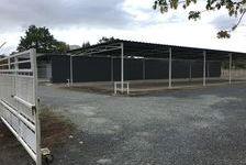 Local d'activité 388 m² 1650