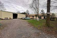 Local d'activité 353 m² 636000 33610 Cestas