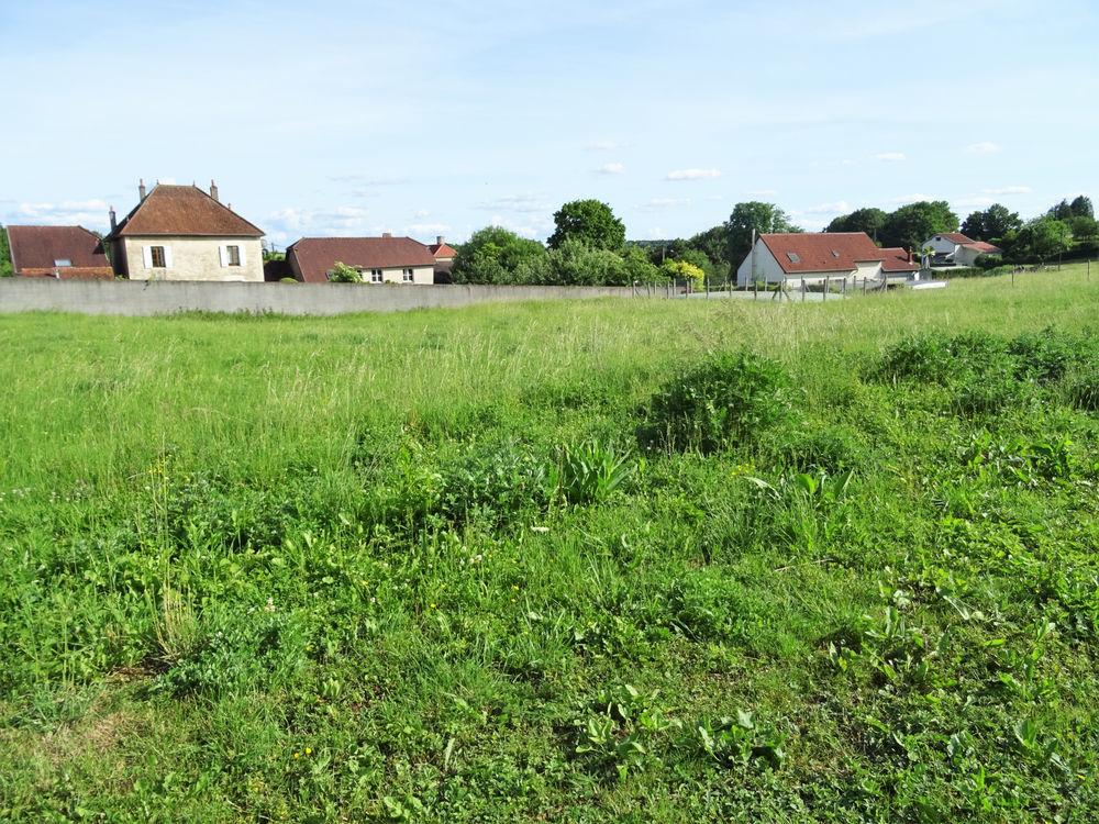 Vente Terrain Vauconcourt-Nervezain : terrain de 1295m2 à acheter 15950 € Vauconcourt nervezain