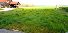 Terrain à bâtir de 990 m2 viabilisé avec vue dégagée 35000 Montmirey-la-Ville (39290)