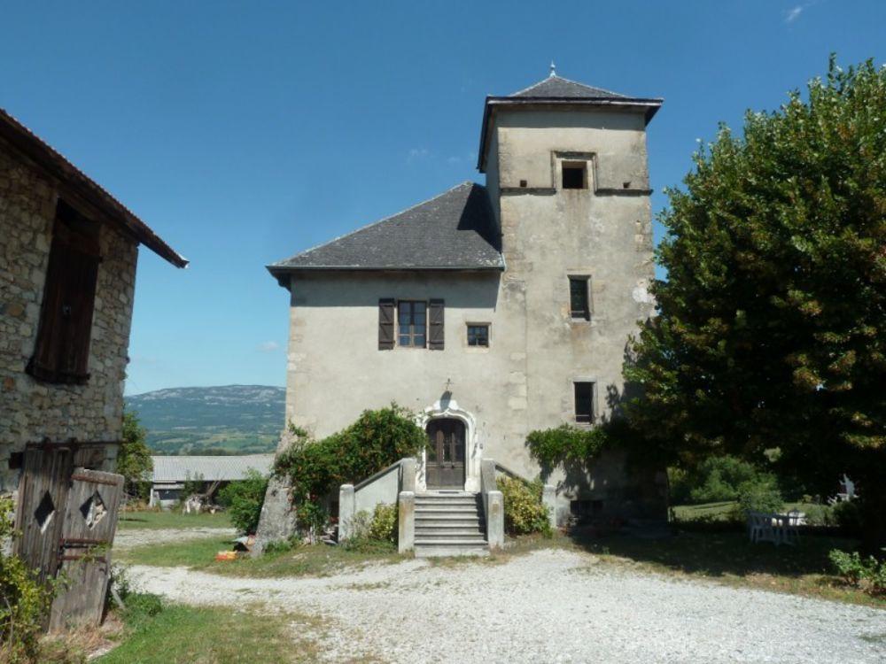 Vente Propriété/Château Château 10 pièces  à Frangy