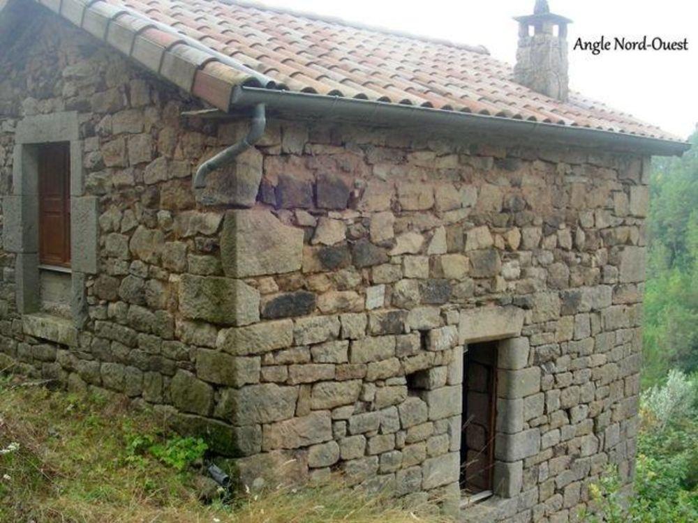 Vente Maison Maison à rénover  à Saint andre lachamp