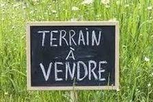 Terrain 51900 Sainte-Foy (85150)