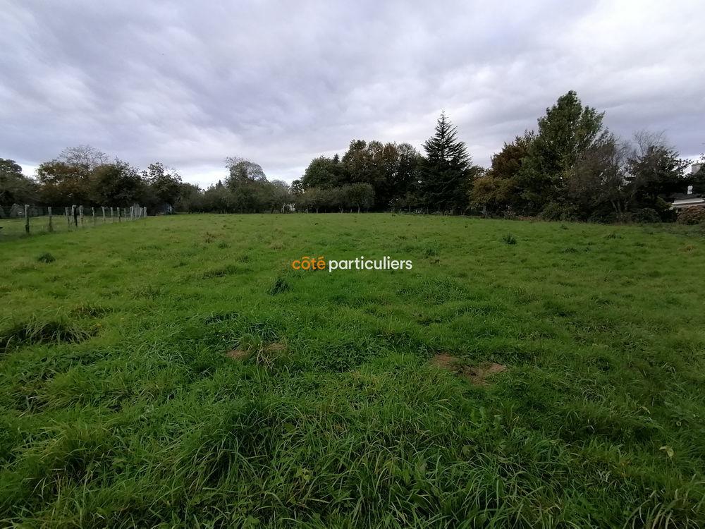 Vente Terrain Terrain de 4279m2 à acheter 85000 € à Pontivy (56) Pontivy