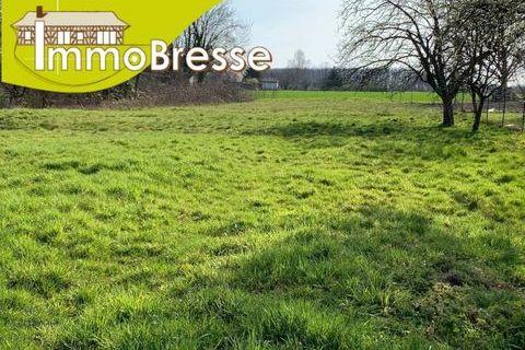 Terrain artisanale - 1375 m² - 2 km de Bourg en Bresse 89000 Viriat (01440)