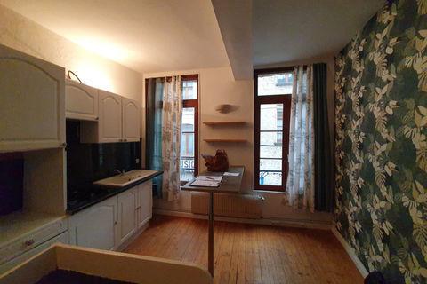 Agréable appartement en centre-ville 585 Saint-Omer (62500)
