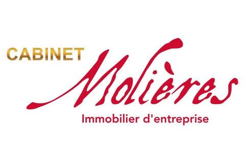 Commerce Restaurant - COLOMIERS - 300 m2 250000 31770 Colomiers