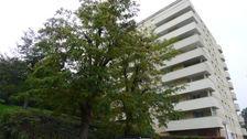 Vente Appartement Dijon (21000)