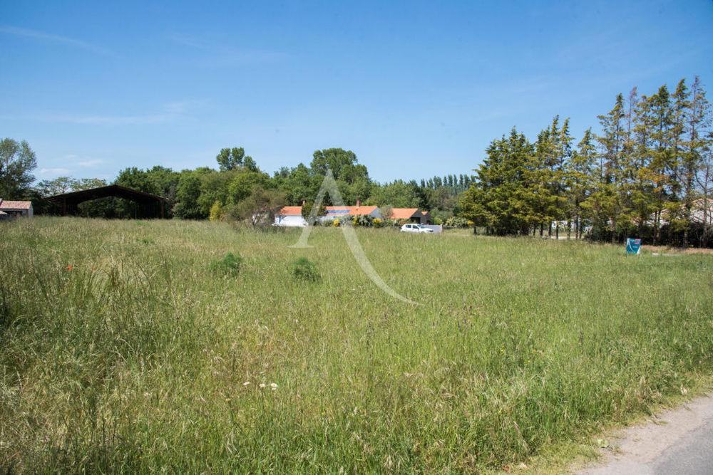 Vente Terrain Terrain Saint Jean De Monts 2615 m² Saint jean de monts