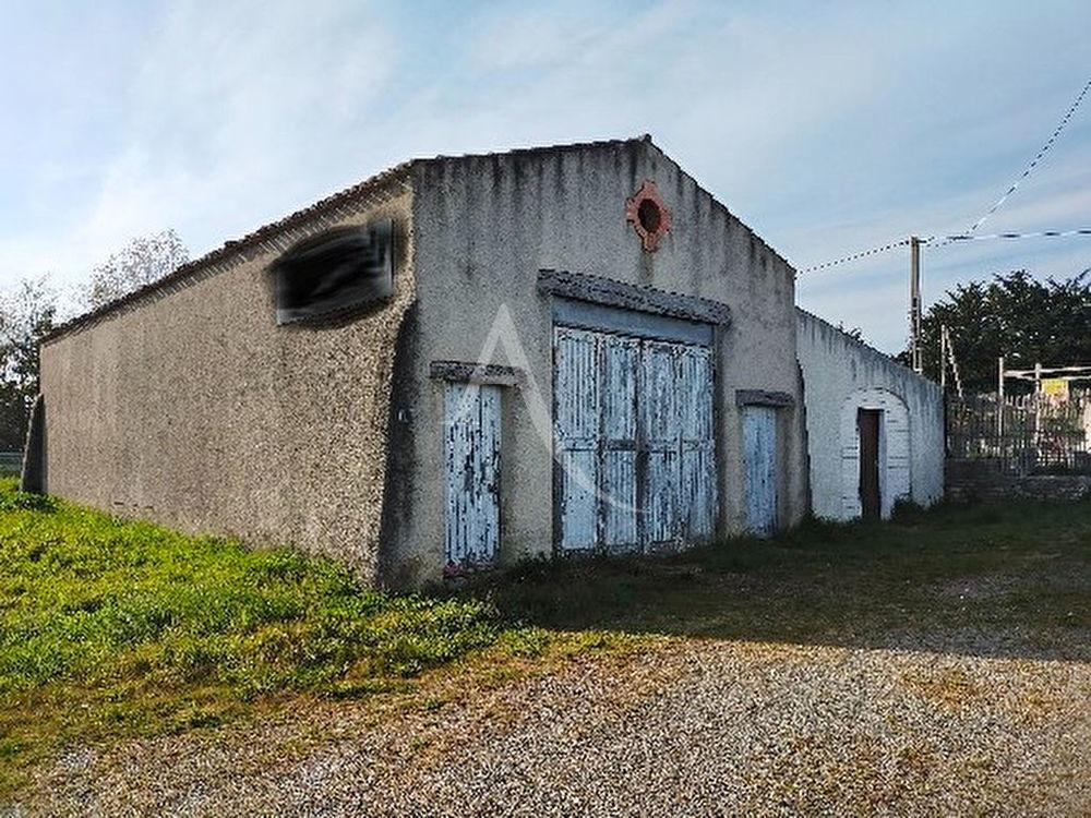 NOTRE DAME DE RIEZ - Entrepôt / local industriel -  270 m2