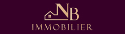 NB IMMOBILIER