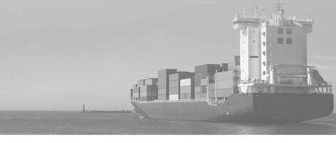 Socar Shipping Lyon, concessionnaire 69