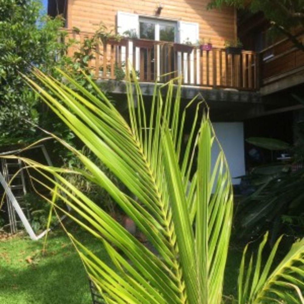 Joli bungalow avec vue sur la mer Vue mer - Télévision - Terrasse - Balcon - place de parking en extérieur . . . 119 € / Semaine DOM-TOM, Le Tampon (97430)