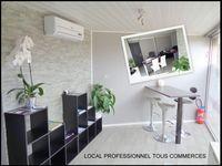 LOCAL PROFESSIONNEL TOUS COMMERCES PLAISANCE DU TOUCH 550
