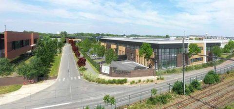 Locaux d'activité - A LOUER - 3686 m² divisibles à partir de 651 m² 33801 94370 Sucy en brie