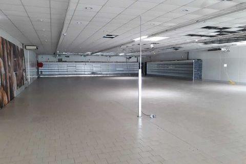 Locaux commerciaux - A LOUER - 1170 m² non divisibles 12671 33185 Le haillan