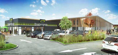 Locaux commerciaux - A LOUER - 4238 m² divisibles à partir de 168 m² 52975 33380 Biganos