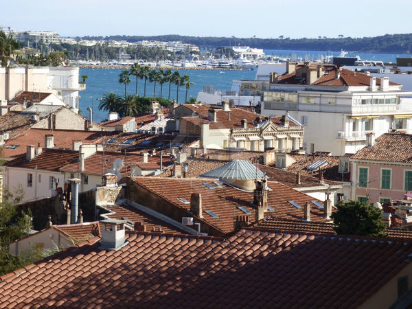 Annonce Location Appartement Cannes 06400 78 M 1 580