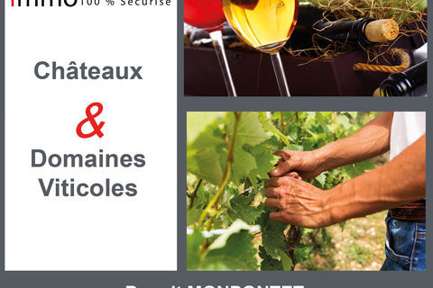 Sauternes Vignes Barsac   6 Hectares 213000 33720 Barsac