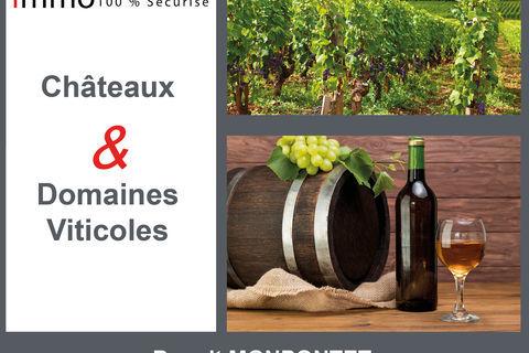 Parcelle de vignes 99000 33410 Ste croix du mont