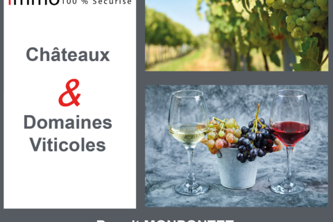 Propriété viticole langon 459000 33210 Langon