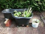 Jardins occasion dans la Meurthe-et-Moselle (54), annonces achat et ...