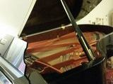 Asaisir superbe piano1/2Queue SCHIMMEL 1,89M. 16000 Cagnes-sur-Mer (06800)
