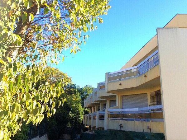 Annonce Vente Appartement Montpellier 34000 19 M 81
