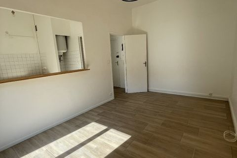 Vente Appartement Borgo (20290)