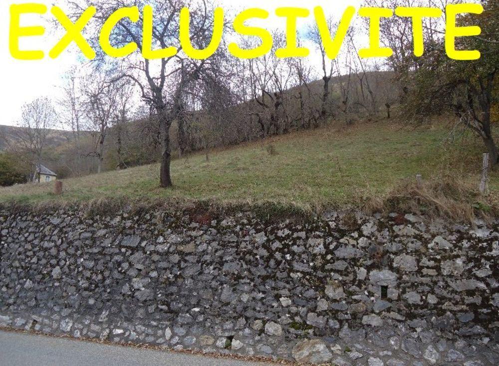 Vente Terrain Terrain constructible Mayregne