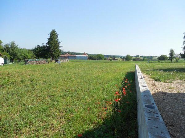 vente Terrain - 2138 m² Moissey (39290)