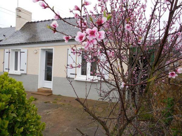 Maison - 4 pièce(s) - 45 m² 41000 Ch�teau-Gontier (53200)