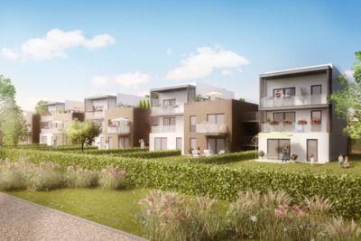 Appartements neufs  Loi   Chevigny-Saint-Sauveur (21800)