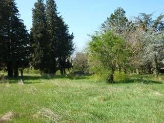 Terrains � batir  Loi   Montfavet (84140)