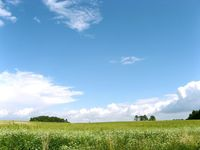 Terrains à batir  Loi  Ploeren (56880)