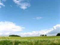 Terrains à batir  Loi  Contz-les-Bains (57480)