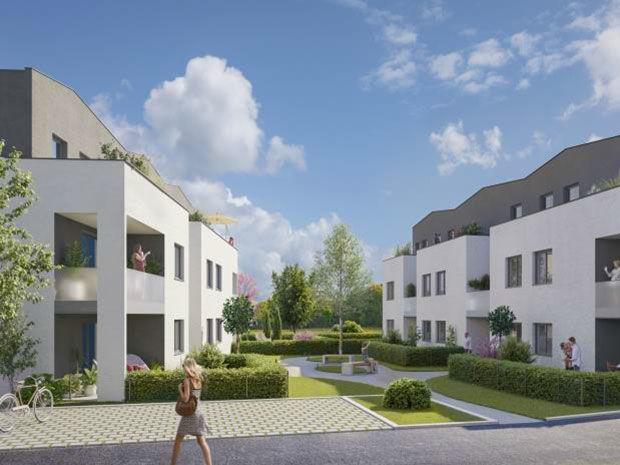 Appartements neufs  Loi  Griesheim-près-Molsheim (67870)