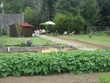 Vends terrain de loisir et jardin (55) - 16 000 €