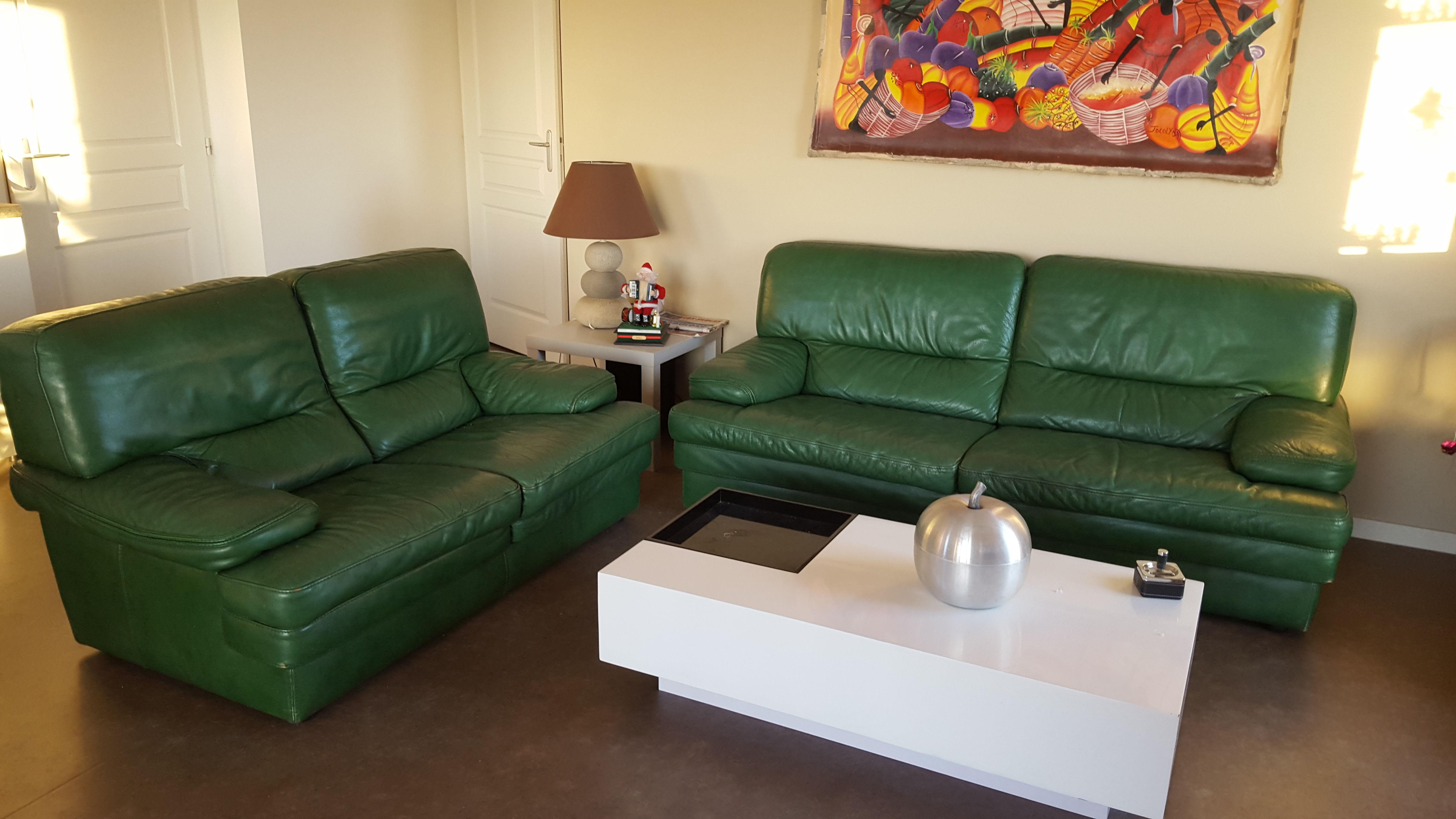 la meilleure attitude 8c8ff effab Achetez canapés cuir vert occasion, annonce vente à Olonne ...