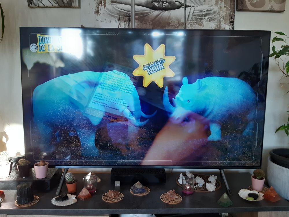 TV UHD 138 CM 650 Nantes (44)